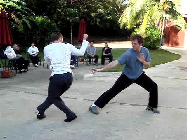 Tiger claw kung fu techniques