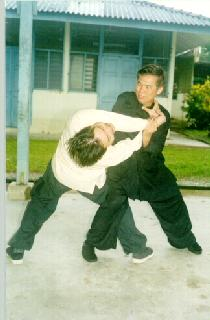 Throwing technique in Wing Choon Kungfu