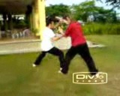 Combat Application of Shaolin Kung Fu