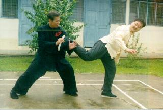Li technique of Taijiquan