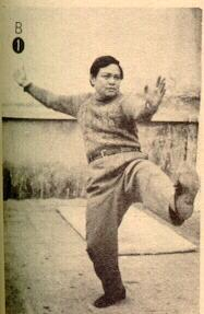 Sifu Chen Thin Hung