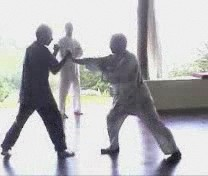 Video Clip Series: How You Could Apply Taijiquan for Combat