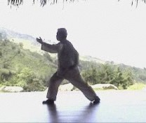 Basic Wahnam Taijiquan Training