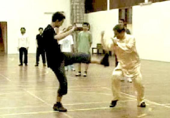 kungfu for combat