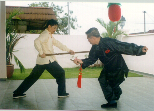 Kungfu Weapons