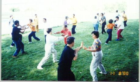 Combat Training in Taijiquan