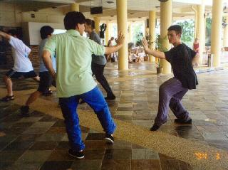 Importance of stances in kungfu combat