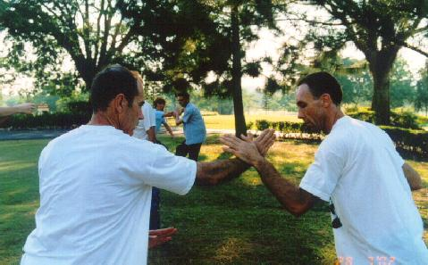 Taijiquan Combat Application