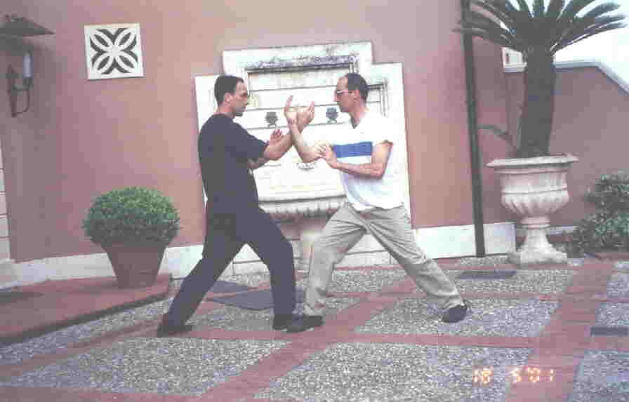 Taijiquan Striking Hands