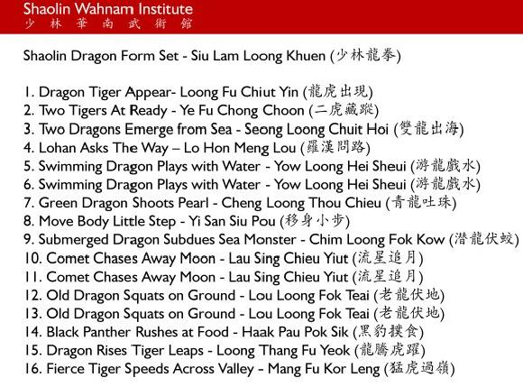 shaolin dragon form set in picture series