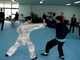 8 Distilled Shaolin Combat Sequences