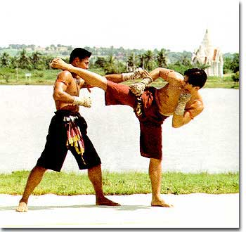 Muay Thai Counters
