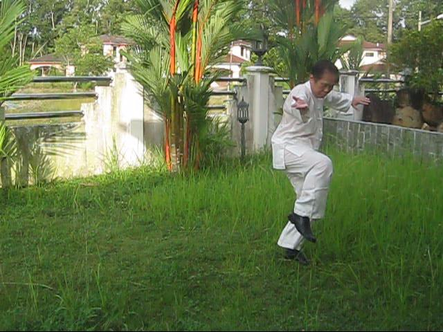 64 Palms of Baguazhang