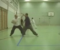 kungfu sparring