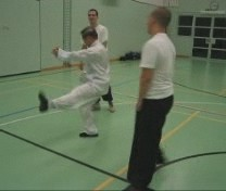 combat application of Da Lohan Quan